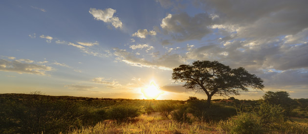 The Northern Cape - So Much to Offer Travellers