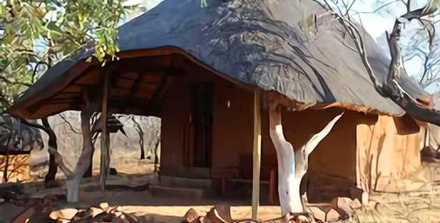 thornwood lodge, game lodge, bela-bela, accommodation, game reserve, waterberg, limpopo, weddings, honeymoon accommodation, aa approved, highly reccommended