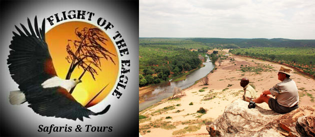 Flight of the Ragle Tours and Safaris, travel, tour, operators, shuttle, transfer, services, south, africa, cape, kzn, gauteng, limpopo