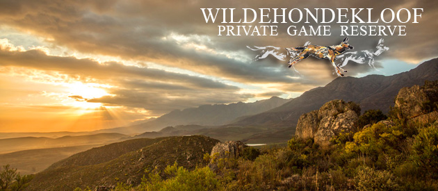 WILDEHONDEKLOOF - PRIVATE GAME RESERVE