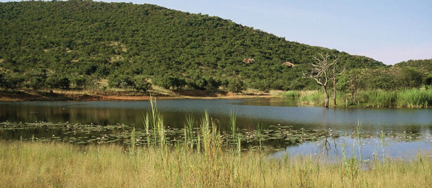 Vaalwater is a small village situated in the Waterberg region of the Limpopo Province in South Africa.